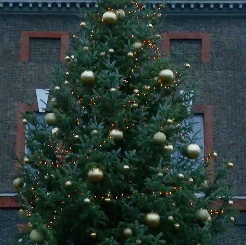 kensington-palace-christmas-tree-2018-2-1544481665[1]